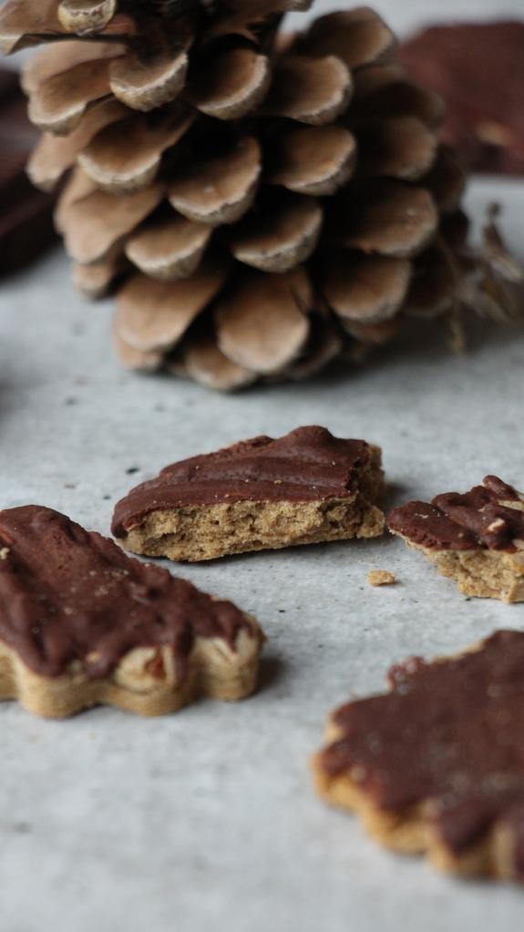biscuit chataigne chocolat sans gluten